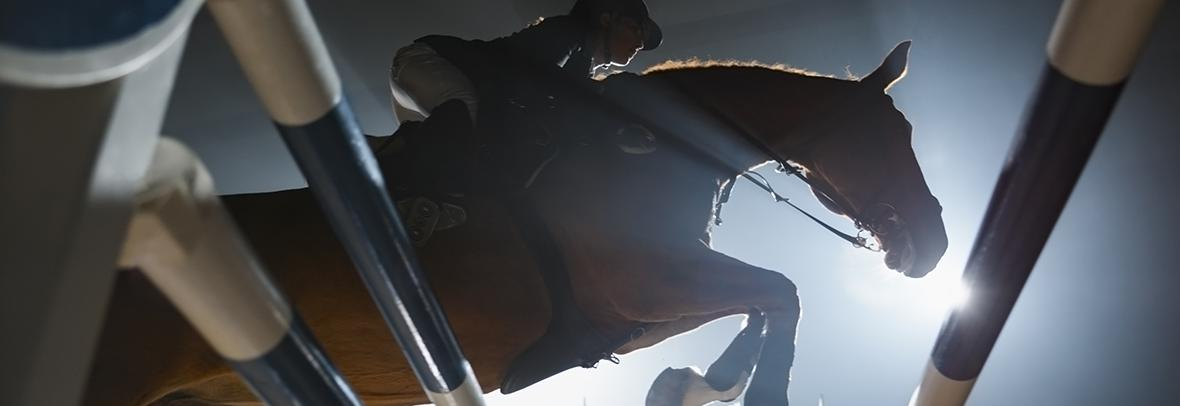 equestrian rider jumping over an obstacle